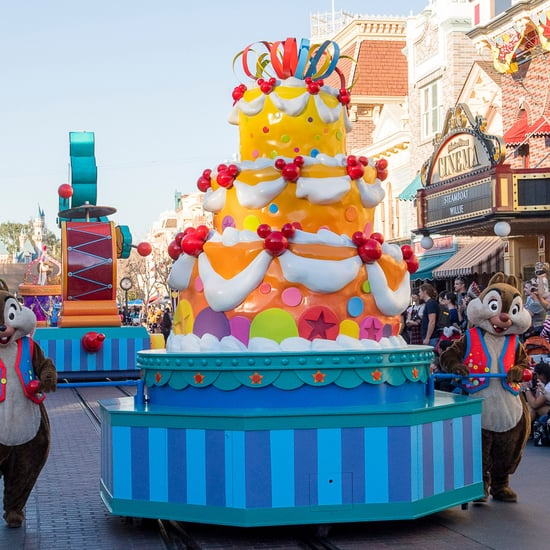 Which Strollers Are Allowed at Disney?