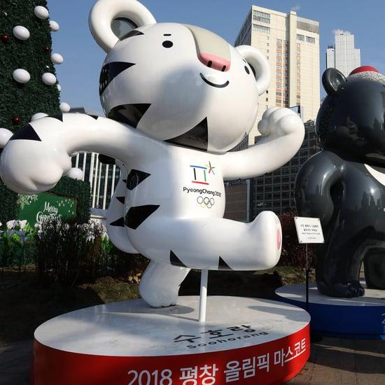 2018 Winter Olympics Mascot Soohorang