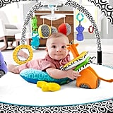 Fisher-Price Jonathan Adler Sensory Gym