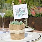 Rosette Succulents With Personalized Tags