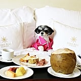 My first morning, I received a traditional Dominican breakfast in bed. Talk about #foodie photo worthy!