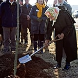 The queen helped plant a tree during a ceremony in the Diamond Jubilee Wood on her Sandringham estate.
