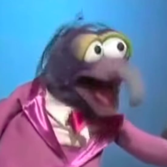 "The Muppets Version of ""The Humpty Dance"""