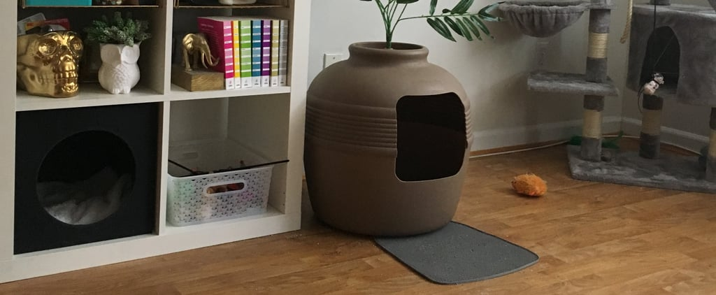This Genius Litter Box From Amazon Is a Godsend For Apartment Dwellers