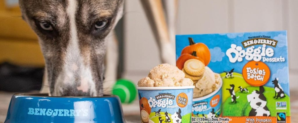 Ben and Jerry's Ice Cream Flavors For Dogs | Doggie Desserts