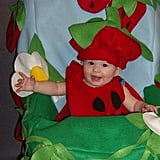 Strawberry Patch Costume