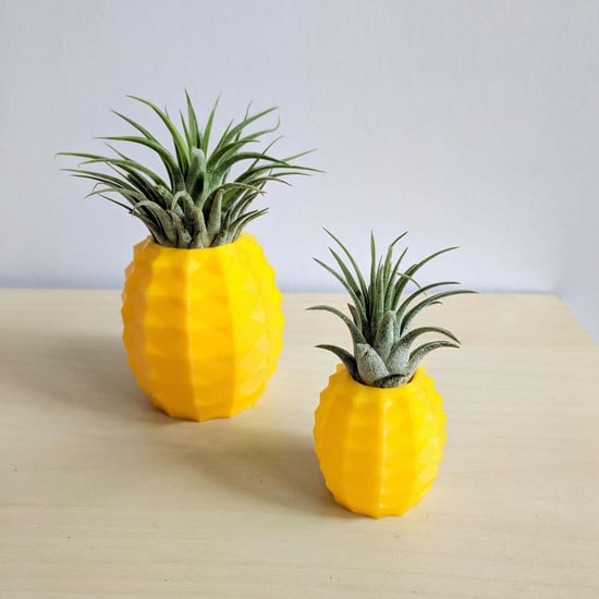 Etsy's Pineapple Air Plant Holders Are Beyond Cute