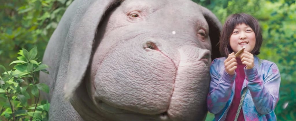 This Adorable Animal Steals the Spotlight From Jake Gyllenhaal in the Okja Trailer