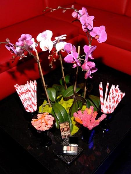 See It: Vanessa Minnillo & Flirt! Cosmetics