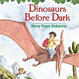 The Magic Tree House Series by Mary Pope Osborne