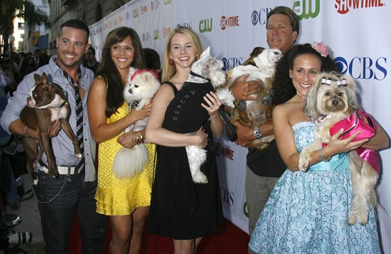 The Greatest American Dog Dressed to Impress at the TCAs!