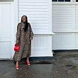 An Animal-Print Dress, Red Bag, and Heels