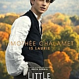 Timothée Chalamet's Little Women Poster