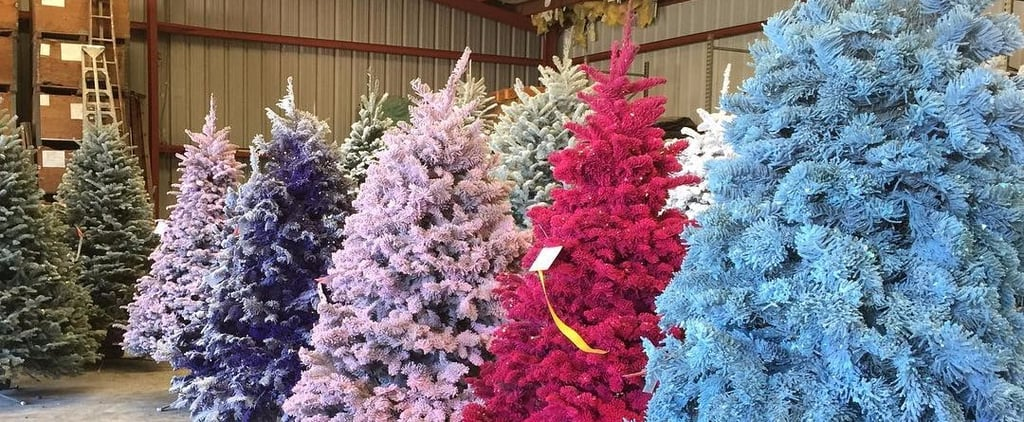 Rainbow Trees Might Be the Craziest Christmas Trend Ever