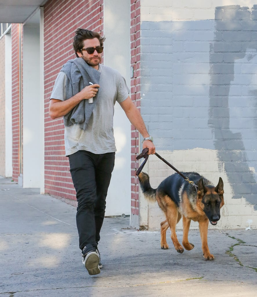 Jake Gyllenhaal had his German Shepherd Atticus by his side in LA in April 2015.