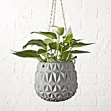 Hanging Gray Planter