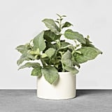 Faux Mint Potted Plant