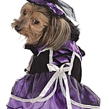 Purple Witch Pet Costume