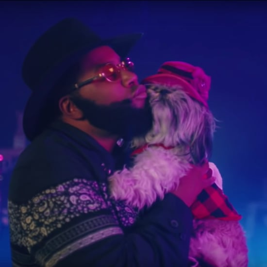 "SNL ""I Love My Dog"" Rap Music Video January 2019"