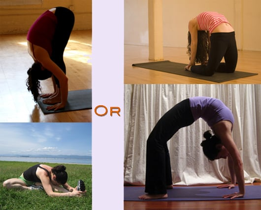 Which Way Do You Like to Bend?