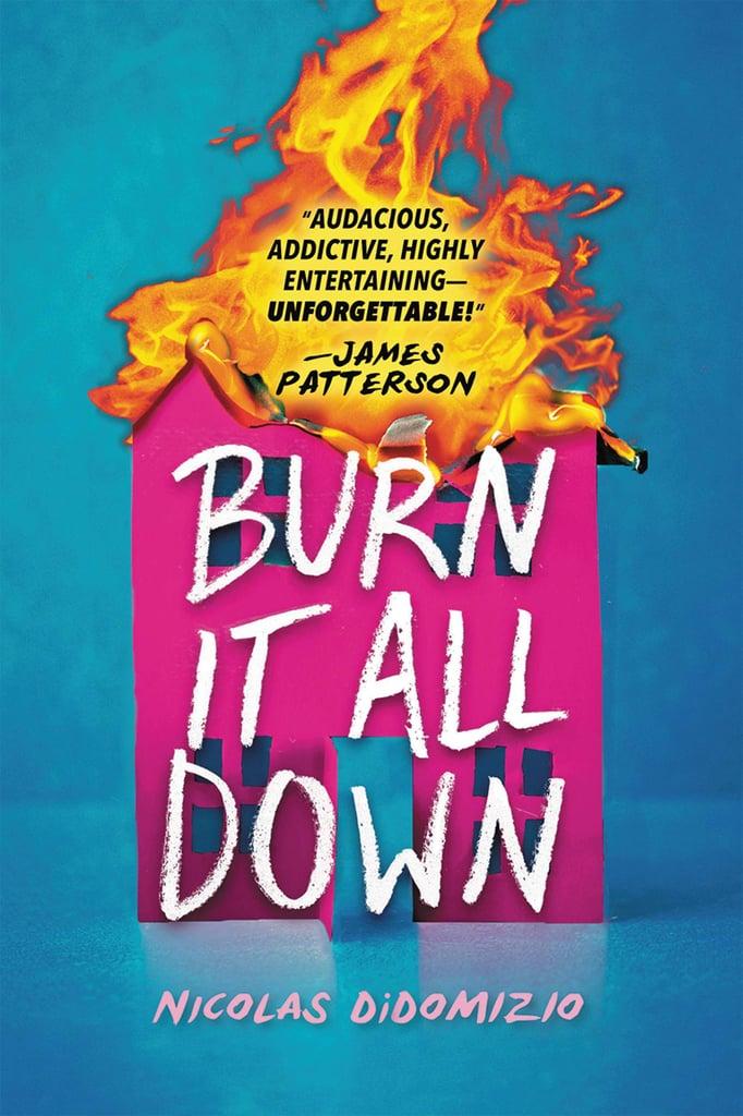 Burn It All Down by Nicolas DiDomizio