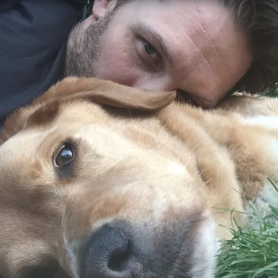 Tom Hardy's Dog Dies 2017