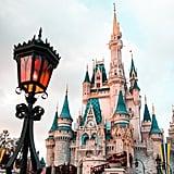 Visit a Disney park.