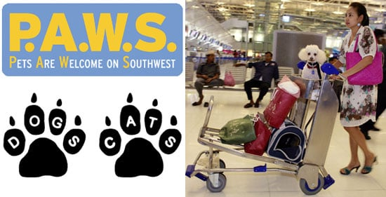 The Scoop: Southwest Airlines Now Flies the Pet-Friendly Skies