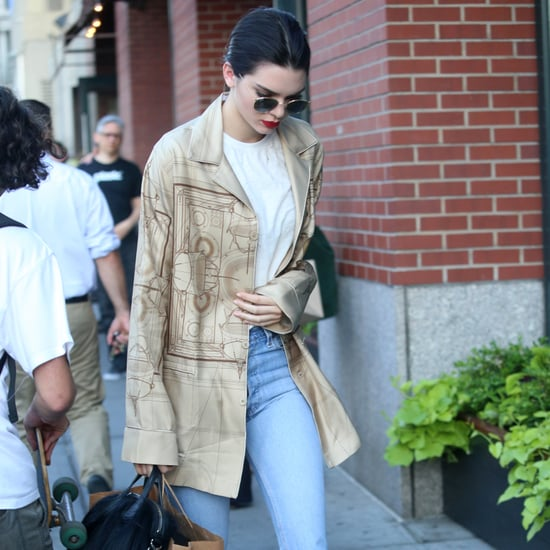 Kendall Jenner's Furry Givenchy Bag