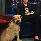 Ryan and his beloved dog George visited Late Night With Jimmy Fallon in 2011.