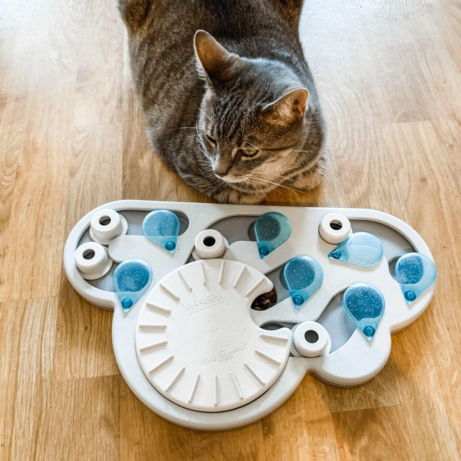 Cat Slow Feeder Puzzle Review Petstages Rainy Day Popsugar Pets