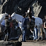 Kristen wore a dress on the back of her white horse.