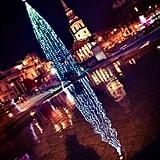 Visit the Trafalgar Square Christmas Tree