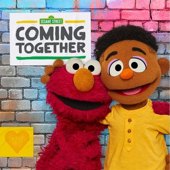 Sesame Street Black Muppets Explain Race to Kids   Video