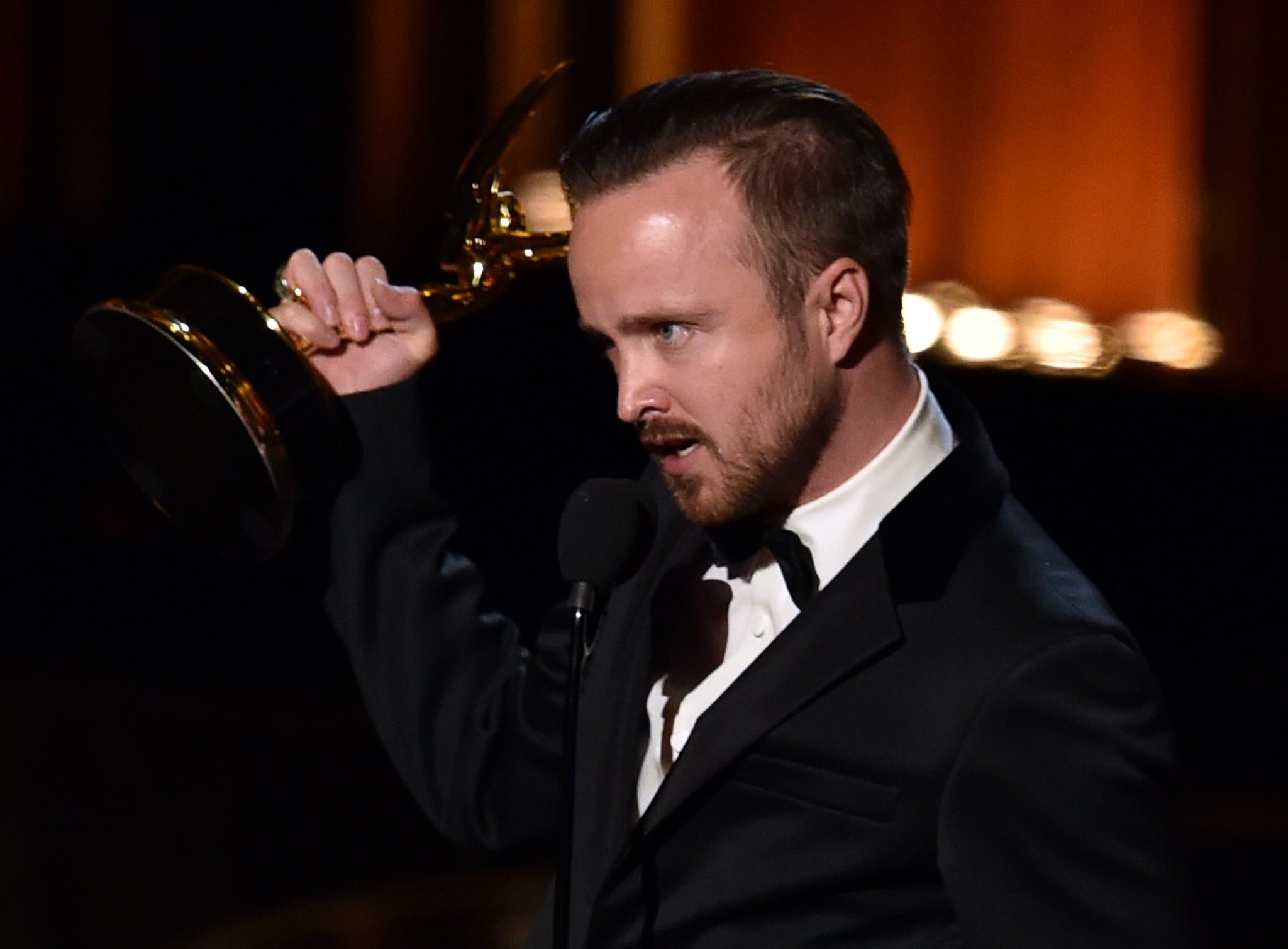 Aaron Paul Just Crashed His Wife's Website