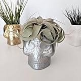 Silver Skull Planter