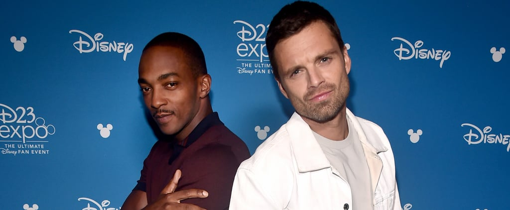 Sebastian Stan and Anthony Mackie Friendship Pictures