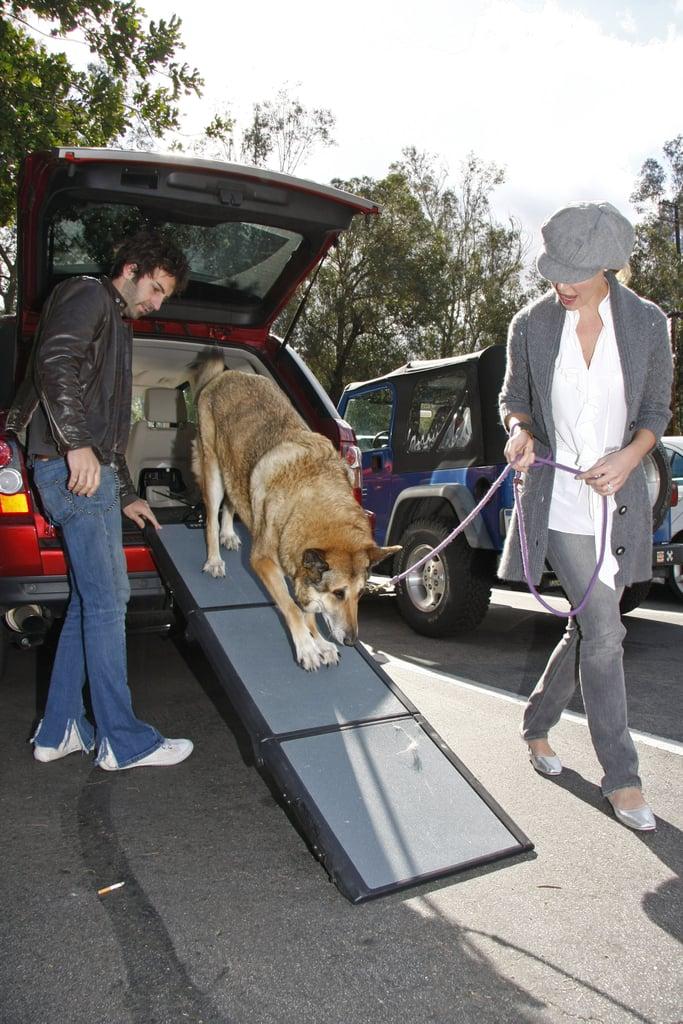 Katherine, Josh, and Furry Crew Take a Walk