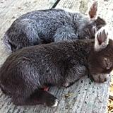 These precious sleepy kids