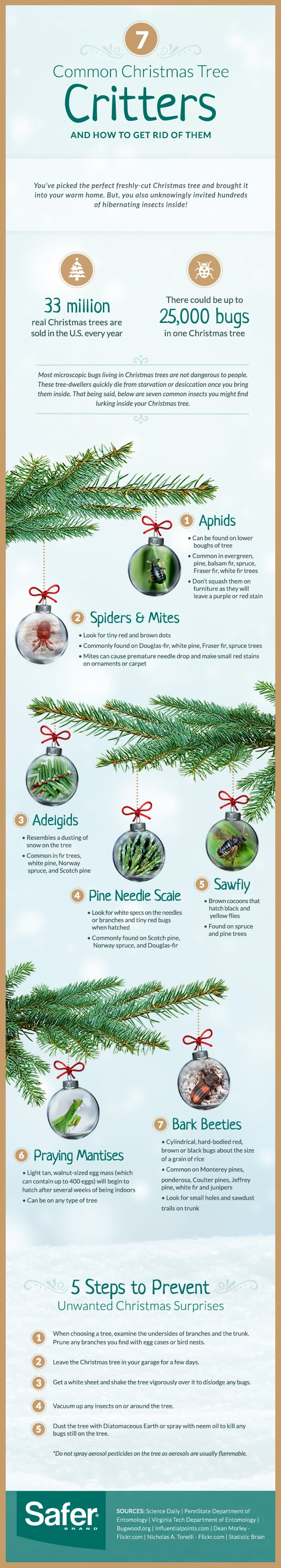 Bugs in Christmas Trees | POPSUGAR Home