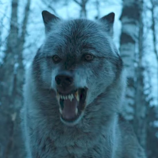 What Did Arya Say to Nymeria on Game of Thrones?