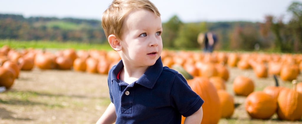 13 Things to Know Before Taking Your Kids Pumpkin Picking