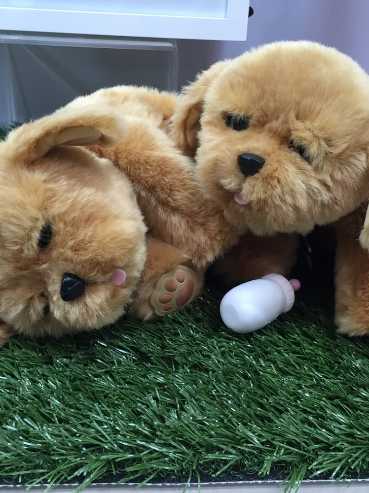 Little Live Pets Lil Puppy New Toys From Toy Fair 2016