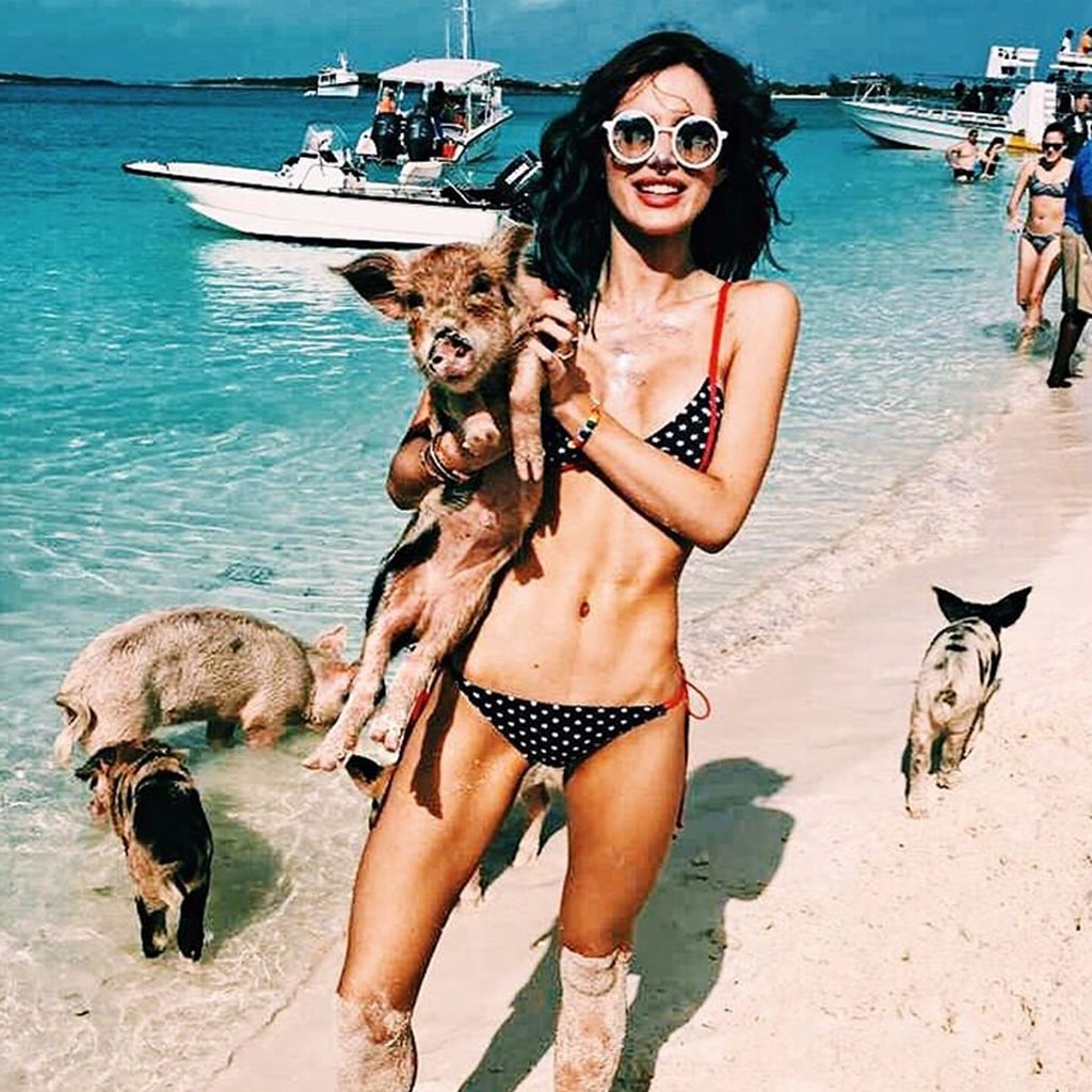 Bella Thorne's Star-Printed Bikini January 2017
