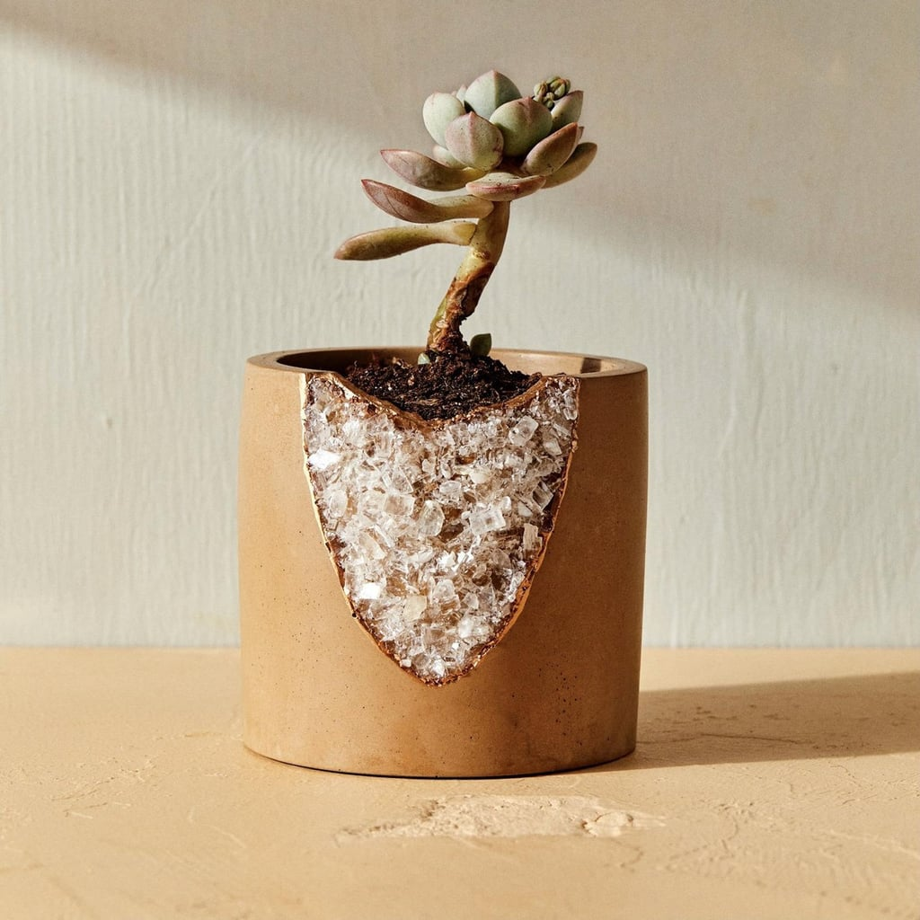 House of Harlow 1960 Creator Collab Geode Planter