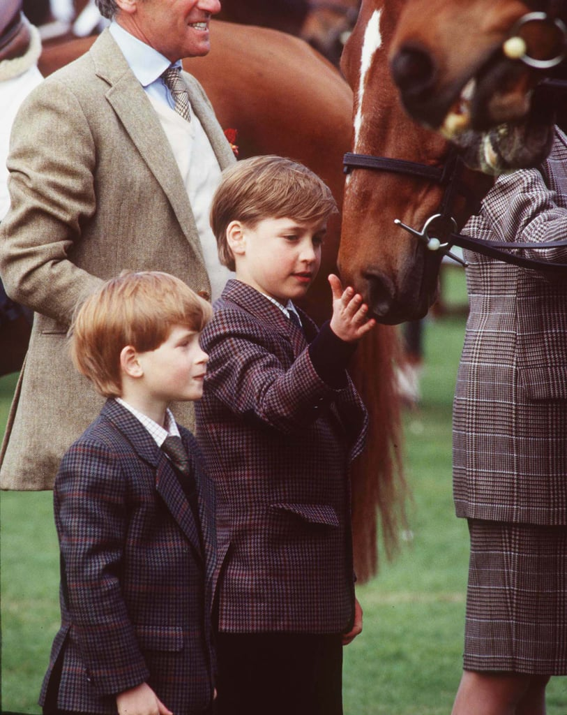 William and Harry gingerly patted a horse when they visited the Badminton Horse Trials in May 1991.
