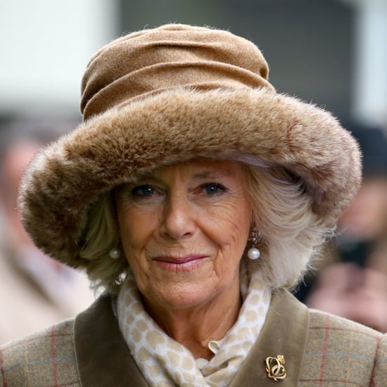 What Do Will and Harry's Kids Call Camilla?