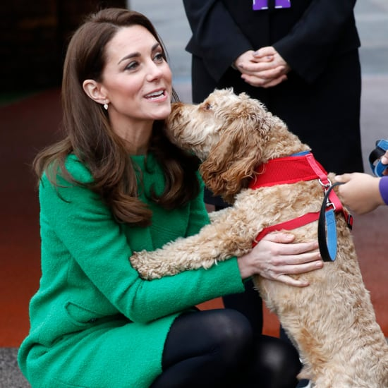 Pictures of the British Royals With Animals