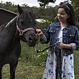 The Ponysitters Club, Season 1