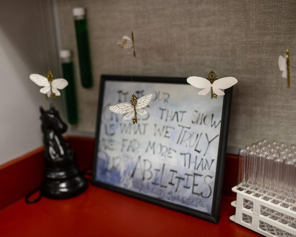 Third-Grade Teacher Creates Harry Potter Classroom